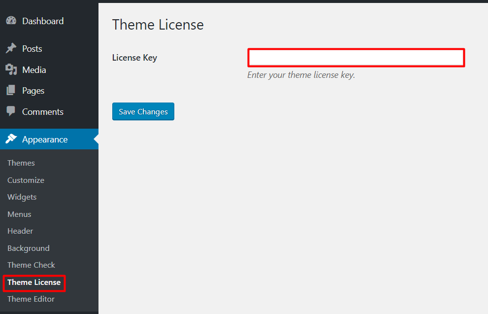 theme license